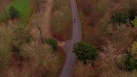 Vue aérienne des cyclistes sur une course inclinée dans un Forest Park clips vidéos