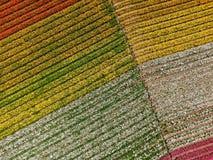 Vue aérienne des gisements de fleur de Carlsbad images libres de droits