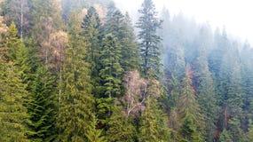 Vue aérienne des montagnes avec un brouillard de matin Photo stock