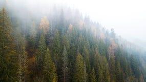 Vue aérienne des montagnes avec un brouillard de matin Images libres de droits