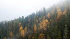 Vue aérienne des montagnes avec un brouillard de matin Photo libre de droits