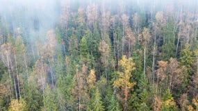 Vue aérienne des montagnes avec un brouillard de matin Photos libres de droits