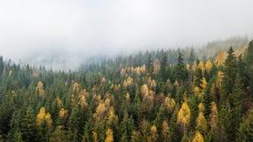 Vue aérienne des montagnes avec un brouillard de matin Image libre de droits