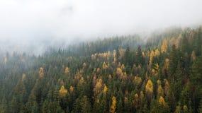 Vue aérienne des montagnes avec un brouillard de matin Photographie stock