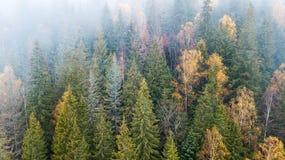 Vue aérienne des montagnes avec un brouillard de matin Photographie stock libre de droits