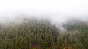 Vue aérienne des montagnes avec un brouillard de matin Photos stock