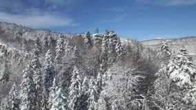 Vue aérienne des montagnes couronnées de neige banque de vidéos