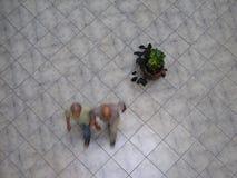 Vue aérienne des Vénézuéliens marchant dans un centre commercial Photo stock
