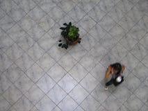 Vue aérienne des Vénézuéliens marchant dans un centre commercial Photo libre de droits