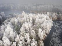 Vue aérienne du fond d'hiver avec une forêt couverte de neige Images stock
