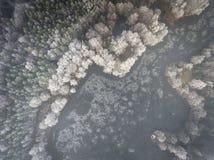 Vue aérienne du fond d'hiver avec une forêt couverte de neige Photographie stock libre de droits
