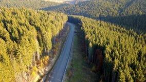 Vue aérienne du paysage serpentin de route et de montagne carpathiens banque de vidéos