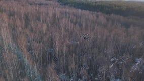 Vue aérienne du vol noir de quadrocopter au-dessus des arbres et de tirer la vidéo de la forêt d'hiver ou de printemps banque de vidéos