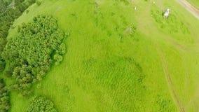 Vue aérienne fantastique des montagnes couvertes de forêt et d'église vertes d'Ananuri Vue de ci-avant banque de vidéos