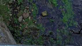 Vue aérienne lente de rivière au-dessus de pont dans le moulin 03 de Taramundi clips vidéos