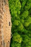 Vue aérienne o la forêt images libres de droits