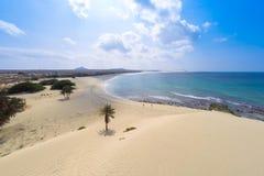 Vue aérienne sur des dunes de sable en plage Praia de Chaves de Chaves en BO Photos libres de droits