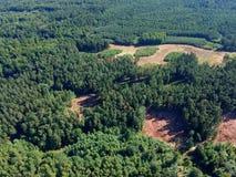 Vue aérienne sur la forêt conifére pendant le jour d'été, réduisant des prcess photographie stock