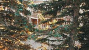 Vue aérienne sur le château et le parc ruinés abandonnés Longueur de couleur d'automne dans la lumière de coucher du soleil clips vidéos