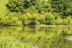 Vue abstraite d'un lac Images libres de droits