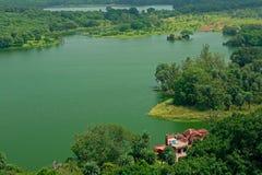 Vue aérienne de forêt de fort Photos stock