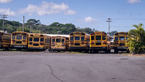 Vue arrière d'autobus scolaire américain dans une rangée Images libres de droits