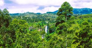 Vue arrière de ` de Devon Falls de `, Sri Lanka photographie stock libre de droits