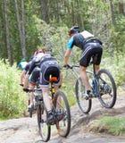 Vue arrière de groupe de cyclistes de vélo de montagne dans la forêt Photo stock