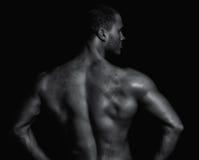 Vue arrière de jeune homme musculaire Images libres de droits