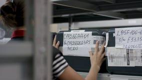 Vue arrière de main-d'œuvre féminine dans l'entrepôt de distribution Jeune femme d'affaires avec le presse-papiers à l'entrepôt Images libres de droits