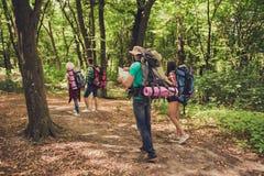 Vue arrière de quatre meilleurs amis, marchant dans la forêt d'automne Images stock