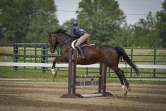 Vue arrière de sauter de femme et de cheval Photographie stock libre de droits