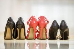 Vue arrière de trois paires de chaussures femelles en cuir de talon haut confortable à la mode d'isolement sur le fond clair de l images stock