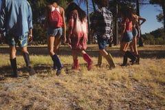 Vue arrière des amis marchant sur le champ Image libre de droits