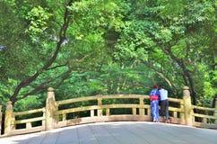 Vue arrière des couples japonais se tenant sur le pont Image libre de droits