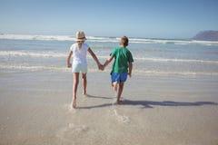 Vue arrière des enfants de mêmes parents tenant des mains tout en courant sur le rivage Photographie stock