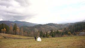 Vue arrière des jeunes couples affectueux attrayants des nouveaux mariés tenant des mains tout en marchant le long du pré d'or da clips vidéos