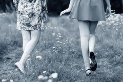 Vue arrière sur des jeunes femmes marchant en parc Photos stock
