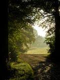 Vue au champ de misyt hors de la forêt Photos libres de droits