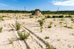 Vue au désert avec des voies de pneu Photo stock