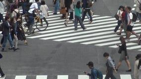 Vue au-dessus d'une foule du passage pour piétons Shibuya Tokyo Attraction touristique clips vidéos