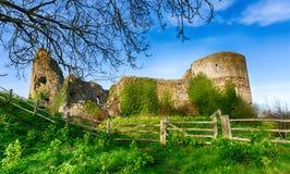 Vue au-dessus de château de Pevensey image libre de droits
