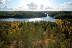 Vue au-dessus de forêt dans des couleurs d'automne Photo libre de droits