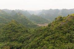 Vue au-dessus de forêt verte Photographie stock libre de droits