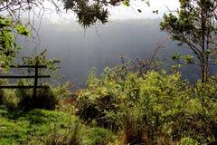 Vue au-dessus de gorge dans la région de Hogsback Images libres de droits