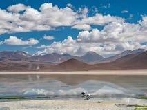 Vue au-dessus des Andes Photos stock
