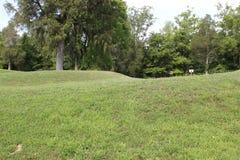 Vue au sol du monticule de serpent Image libre de droits