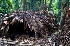 Vue au village de Baka de pygmée, parc national de Dja au Cameroun Image libre de droits