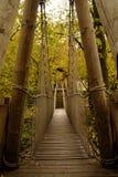 Vue automnale de cabane dans un arbre de jardin d'Alnwick Photo libre de droits