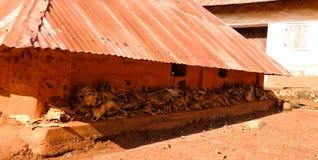 Vue aux palais royaux d'Abomey, Bénin images libres de droits